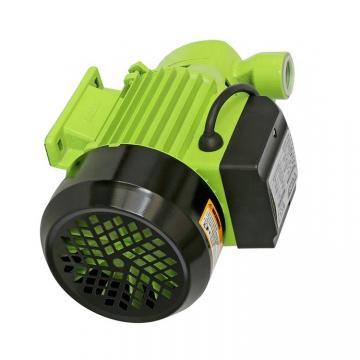 Sumitomo QT63-100L-A Gear Pump